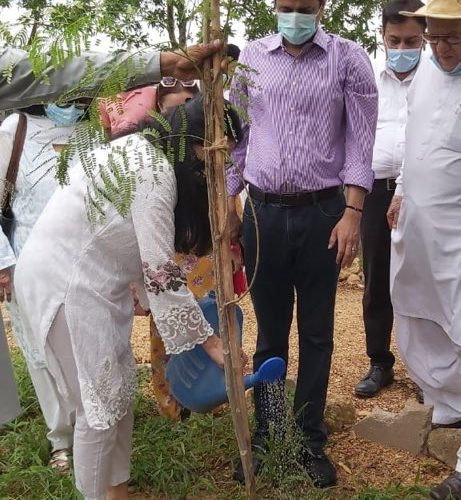 Mutaza Wahab celebrated  wife's birthday by planting trees at the urban fores